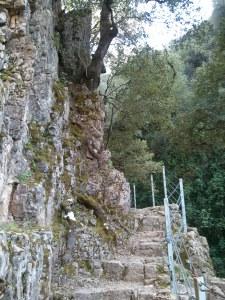 La scalinata per arrivare alle cascate...
