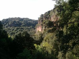 Per finire, uno sguardo a ciò che io chiamo canyon (ma non credo che si chiami così) e alla vegetazione che a differenza di molti altri posti in Sardegna è rigogliosa...