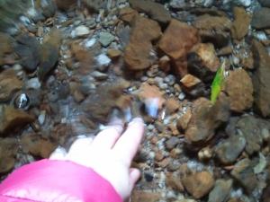 Momento infanzia II: c'è uno specchio d'acqua ed è fredda? Devo toccarla.  Risultato, vi beccate una bellissima foto con un giubbotto di una sobrietà imbarazzante.